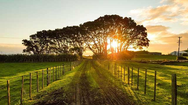 Construire sur terrain agricole for Construire sa maison sur un terrain agricole